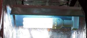 SAMSUNG CSC CFL