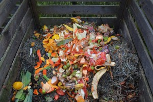 kompost zelenina