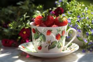 jahody z balkónu