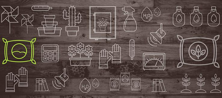 Pěstování Indoor Krok Za Krokem I: Vybíráme Rostlinu A Možnosti Pěstování
