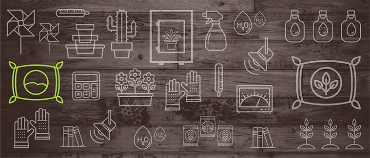 Hledáte Podrobný Návod, Jak Sklízet Plody Rostlin Po Celý Rok? Máme Ho Pro Vás!