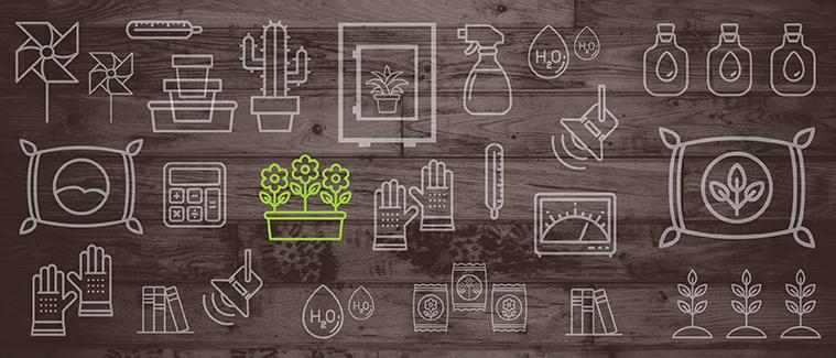 Specifika Hydroponického Pěstování Zeleniny – Znáte Je?
