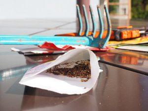 Jak na moření semen