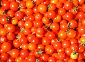 Sníte o pěstování vlastních rajčat? Poradíme vám