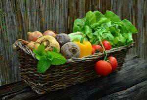 Připravili jsme pro vás přehledný kalendář: kdy vysadit jaký druh zeleniny?