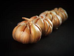 Naučte se vypěstovat lahodný česnek i v domácích podmínkách