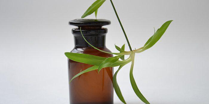 Olej S CBD Je Skvělý Přírodní Doplněk Stravy.