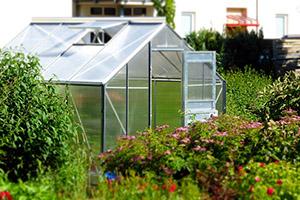 Pěstováním ve skleníku znásobíte svou úrodu.