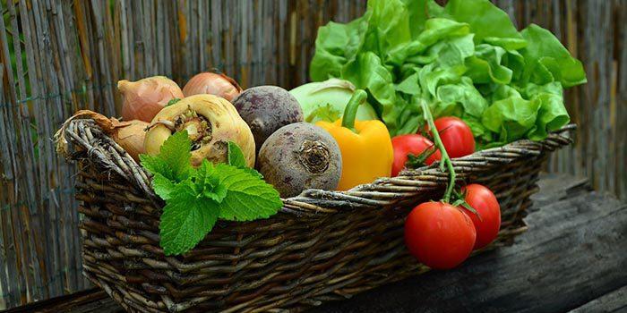 Jak Skladovat Zeleninu, Aby Vám Ji Nenapadli škůdci?