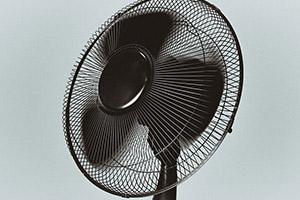 Pro indoor pěstování jsou důležité i osvětlení a ventilace.