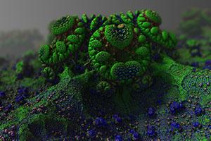 Mikroorganismy obsahují důležité látky pro vývoj rostlin.