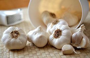 Česnek se dá využít nejen jako koření, ale také jako lék.