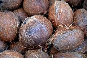 Kokosový substrát zadržuje kyslík a vodu.