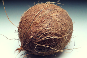 Buďte ekologičtí a pěstujte v kokosu.