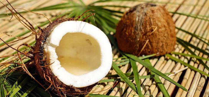 Kokosový Substrát Podporuje Růst Kořenového Systému A Nejen To