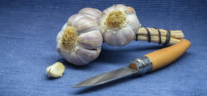 Zapište Si Do Kuchařky: 4 Recepty Na Přírodní Léčiva Z česneku