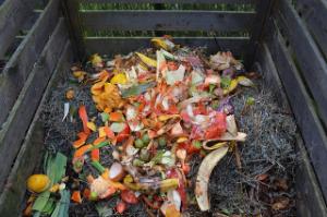 Do kompostu nemůže házet úplně vše.