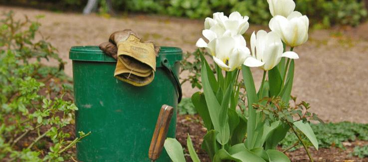 Březen A Duben Na Zahradě: Které Zahradnické Práce Už Volají O Pozornost