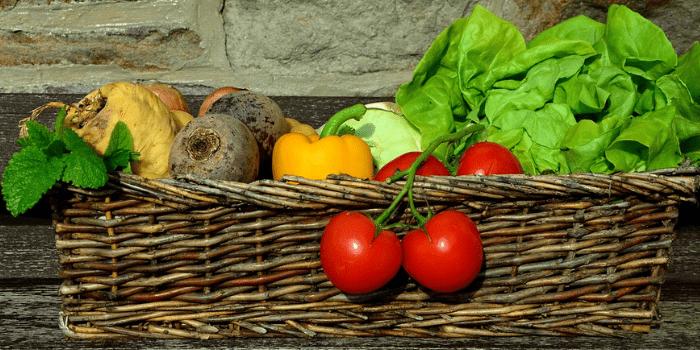 Jarní Výsadba Zeleniny